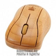 Бамбуковая мышь