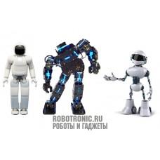 Робот в натуральную величину: макет любого типа робота