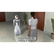 Робот консультант Энбот