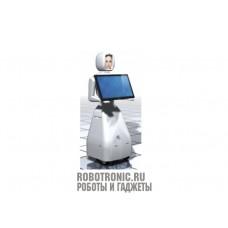 Интерактивный робот Валерия (Valerija)