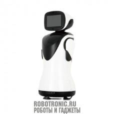 Робот удалённого присутствия P3 Padbot