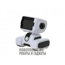 Робот удалённого присутствия T2 Padbot