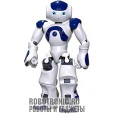 Аренда роботов: NAO от Aldebaran Robotics