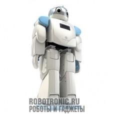 Аренда роботов: HOVIS Eco +