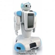 Аренда роботов: HOVIS Genie Humanoid Robot