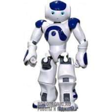 Точная копия робота в человеческий рост
