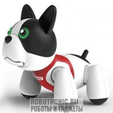 Робот собака Дюк