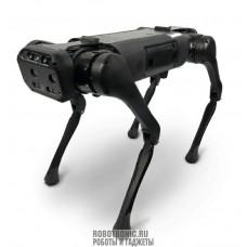 Профессиональный робот пёс