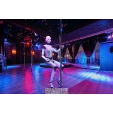 Робот-танцовщица в аренду
