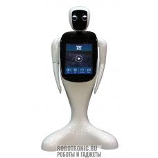 WayBot 2.0 - многофункциональный робот