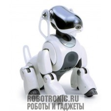 AIBO ERS-7 M2 белый (хорошее состояние)