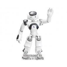 Aldebaran Robotics Robot Nao 6