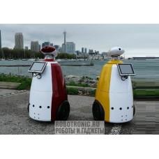 Аренда R.bot / R.bot плюс (8 часов) - робот промоутер