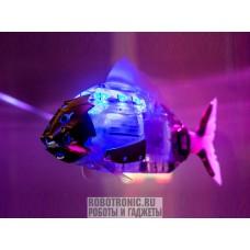 Робот рыба в аренду