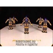 Аренда роботов-танцоров (8 часов)