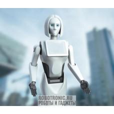Робот промоутер Кики / Kiki