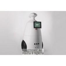 R.Bot 100 Plus (Плюс) - робот промоутер