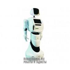 Консультант Promobot V3 Промобот